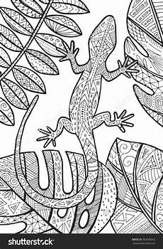 mandala coloring pages lizard 17931 lizard tropical illustration for coloring coloriage insectes dessin coloriage