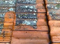 traitement des toitures traitement des tuiles poreuses avignon 84 cavaillon pertuis