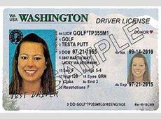 go renew florida license