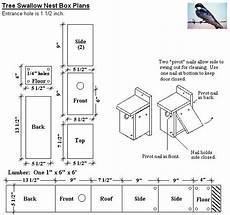 tree swallow house plans kaholly tree swallow housing shortage