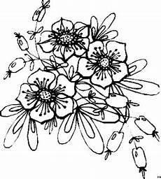 Blumen Malvorlagen Gratis Skizze Beeren Und Blueten Ausmalbild Malvorlage Blumen