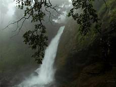 in all kerala glory beautiful monsoon photography in kerala 2020 nativeplanet