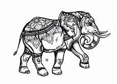 elefanten 62364 elefanten malbuch fur erwachsene