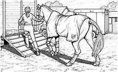 Ausmalbilder Pferde Hindernis Ausmalbilder Pferde Springreiten Ausmalbilder Pferde