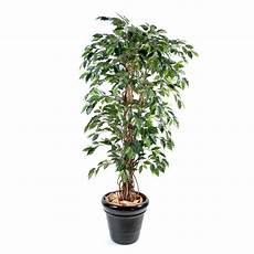 ficus artificiel lianes grandes feuilles vert ou vert