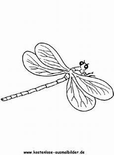ausmalbild libelle zum ausdrucken