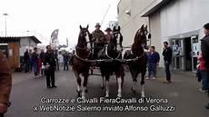 carrozze e cavalli carrozze e cavalli