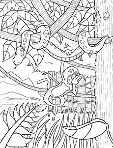 free coloring pages of animals in the rainforest 17397 magic tree house book club afternoon on the