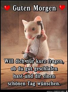 659 Best Guten Morgen Images On Cool Sayings