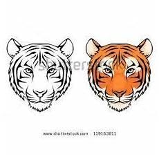 tigerkopf zeichnung vorlage