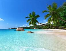 tropical island meeting rooms edinburgh training rooms video conferencing hire