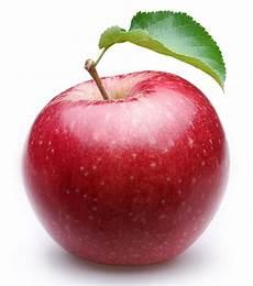 Malvorlage Apfel Mit Blatt Reifer Roter Apfel Mit Einem Blatt Stockbild Bild