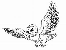 Ausmalbilder Eule Hedwig Owl Coloring Pages Coloringpages1001