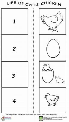 animal cycle worksheets 13938 of cycle worksheet for preschool preschool worksheets cycles preschool activities