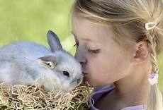 Hase Hamster Hund Haustiere Und Kleine Kinder