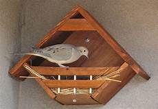 mourning dove house plans dove nesting nook bird house kits bird houses bird