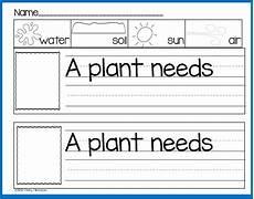 needs of plants worksheets kindergarten 13579 freebielicious plant print play pack freebie