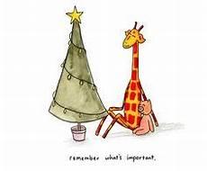 Zootiere Malvorlagen Quotes Die 215 Besten Bilder Zu Giraffenbilder Giraffen Bilder