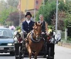 cavallo con carrozza carrozza d epoca per il matrimonio nozze carrozze foto 8