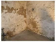 Aufsteigende Feuchtigkeit Keller In L 252 Beck Nbg
