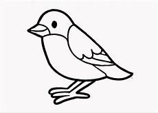bird drawing easy for step by step bird drawing