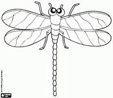 malvorlage marienk 228 fer ausmalbilder insekten und andere