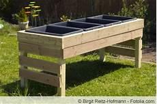 Hochbeet Bauen Günstig - hochbeet billig bauen amilton