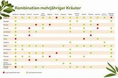 Welche Kräuter Vertragen Sich - welche kr 228 uter passen nicht zusammen kr 228 uter die sich