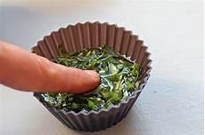 conserver herbes aromatiques comment conserver les herbes aromatiques dans l huile au