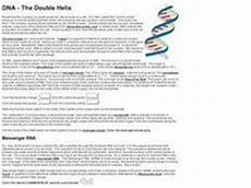 dna the double helix worksheet answers dna the double helix worksheet for 9th 12th grade lesson planet
