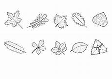 Ausmalbild Igel Im Laub Kostenlose Malvorlage Herbst Herbstlaub Ausmalen Zum Ausmalen