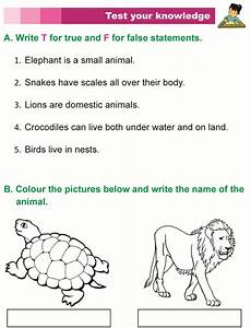 worksheets on animals for grade 1 14265 grade 1 science lesson 3 the animal kingdom primary science