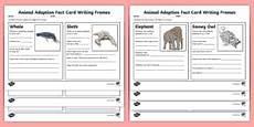 animal adaptations worksheets middle school 13966 ks2 science adaptation resources habitats environment ks2