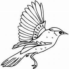 page birds coloring pages printable birds coloring