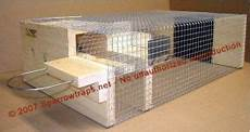 house sparrow trap plans sparrow trap proper credit go the website for blaine