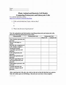 science bacteria worksheets 12135 cells worksheets anima and bacterial cell comparing prokaryotic and eukaryotic cells