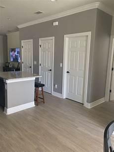 wand streichen grau sherwin williams functional grey kitchen in 2020 paint