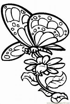 Malvorlage Schmetterling Blume Butterfly With Flower Coloring Page Free Butterfly