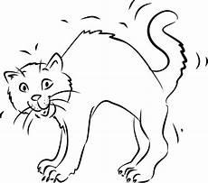 Malvorlage Katze Mit Buckel Katze Mit Buckel Tiere Zeichnen Ausmalbilder Tiere
