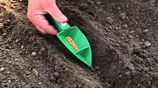 les 3 fa 231 ons de semer les radis