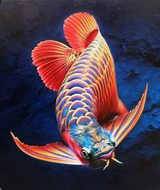 Gambar Jenis Ikan Arwana Tokoternak