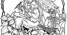 Ausmalbilder Elfen Wald Malvorlage Elfe Im Wald Fairies Wald
