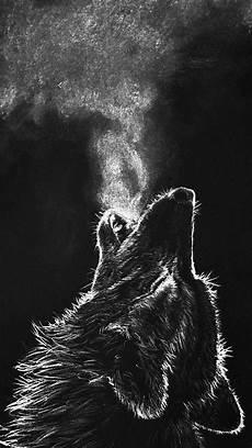 Aesthetic Wolf Wallpaper