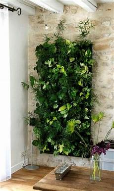 To Make Vertical Garden Indoor Living Wall beautiful vertical gardens make a real statement in your