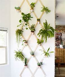 10 indoor garden ideas to cure the winter blues real simple