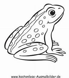 Frosch Ausmalbild Erwachsene Ausmalbilder Frosch Ausmalbilder Tiere Ausmalbild