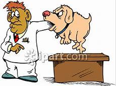 canine coronavirus treatment