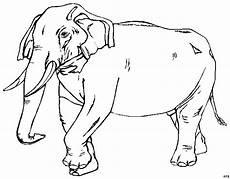 Gratis Malvorlagen Elefant Elefant Schematisch 2 Ausmalbild Malvorlage Tiere