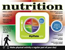 new nutrition my plate poster crk491 15 99 the