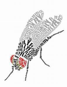 insekten malvorlagen lyrics amorphi